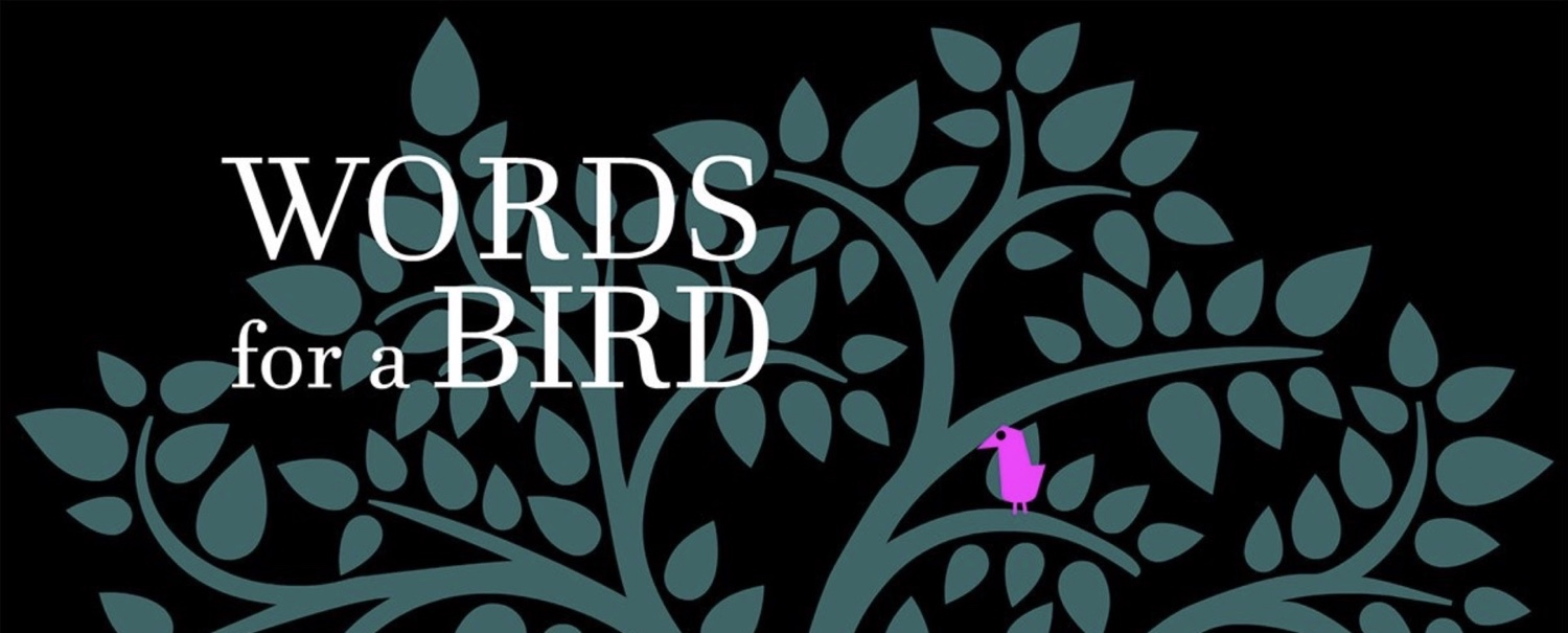 Words for a Bird: Walkthrough Guide